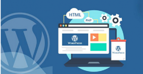 Become WordPress Developer