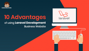 Using Laravel Development