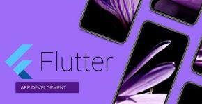 Reliable Flutter APP DEVELOPMENT